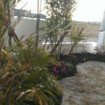 安城 漆喰壁の庭のイメージ