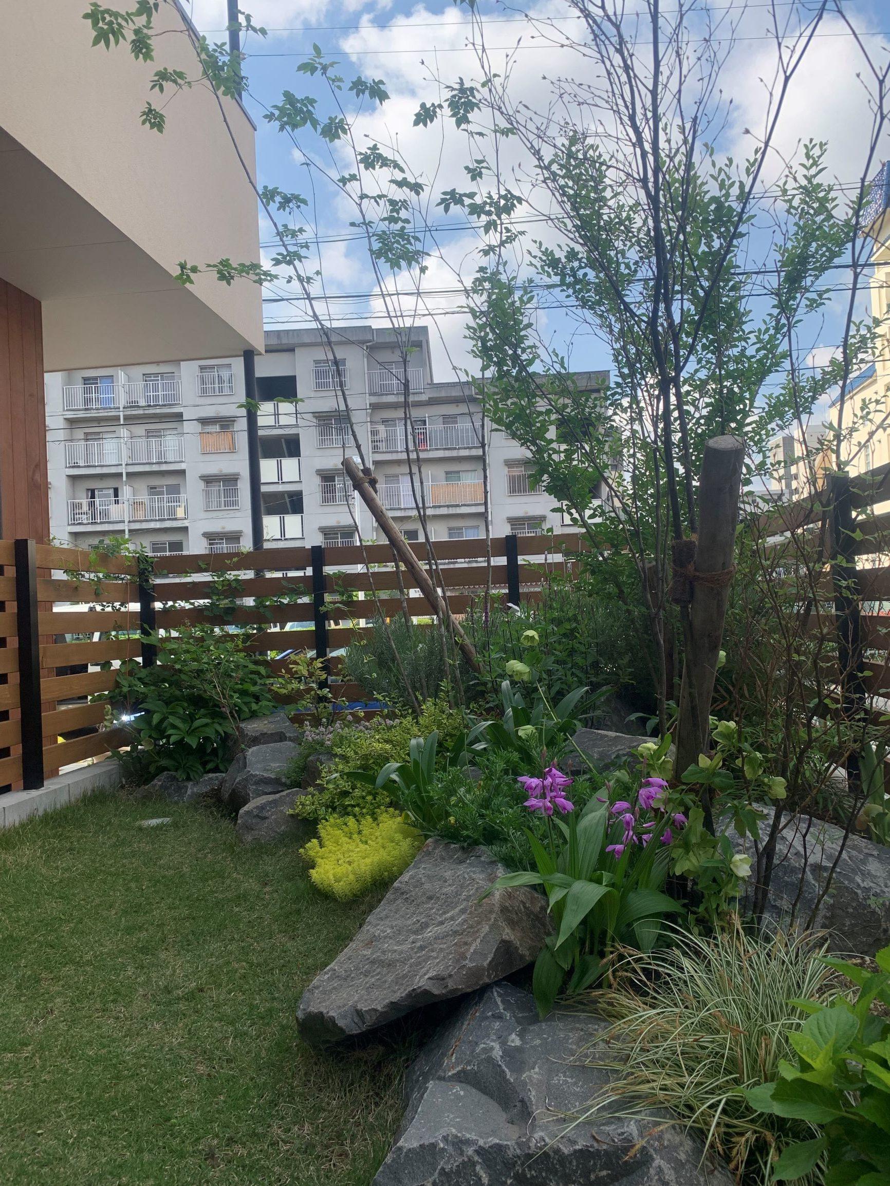 昭和枕木の菜園。窓際の庭。のイメージ