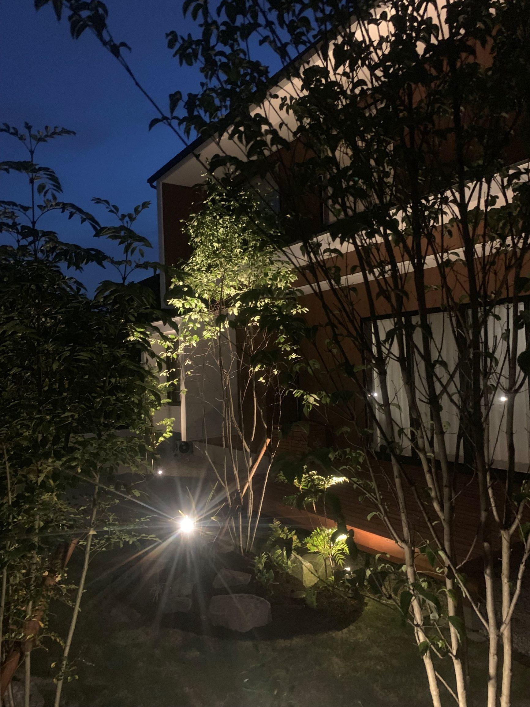 東郷自然石テラスの庭。夜の庭。のイメージ