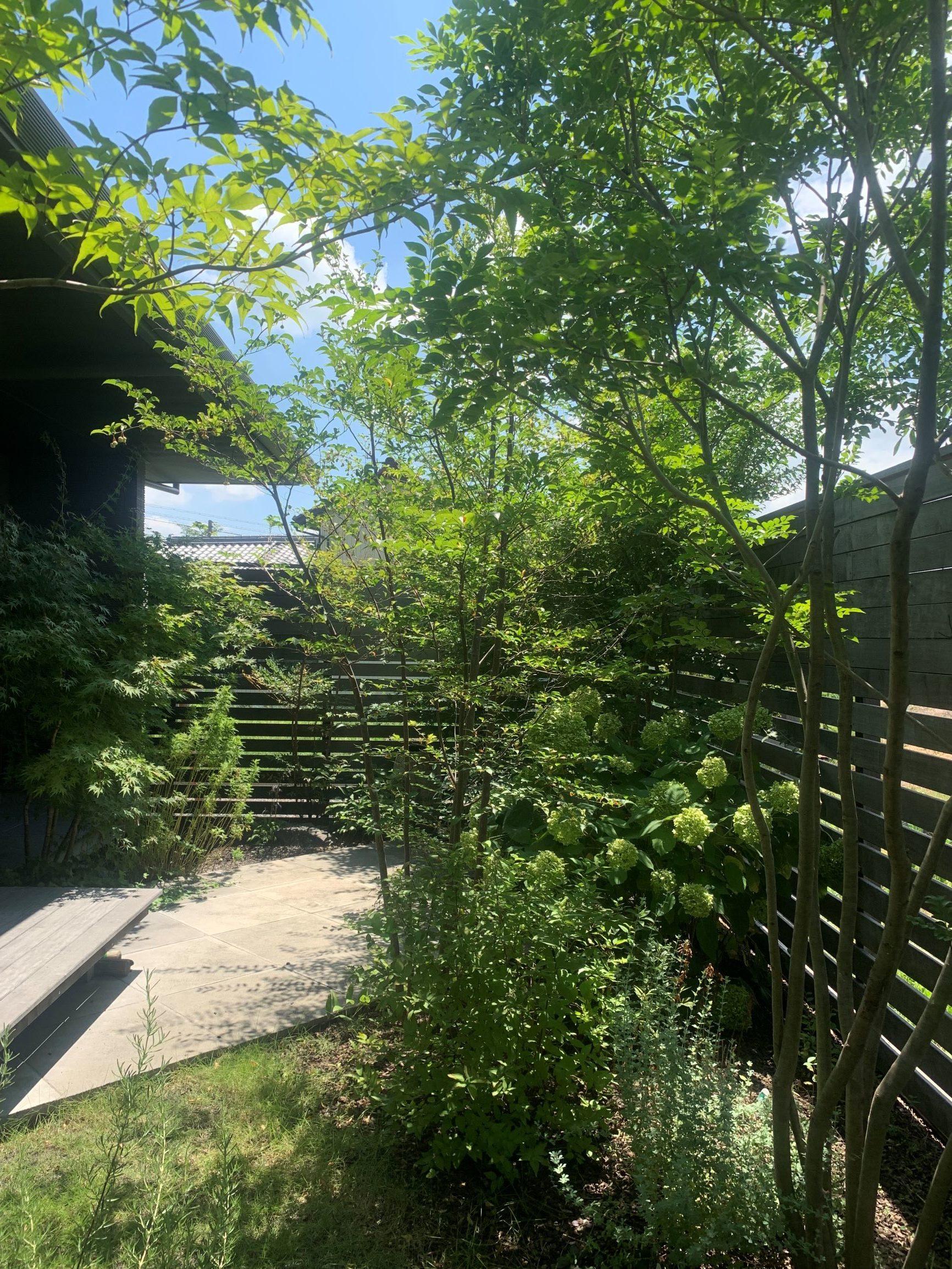 愛西木陰の庭。夏場は別荘にいる感覚で楽しむ。のイメージ