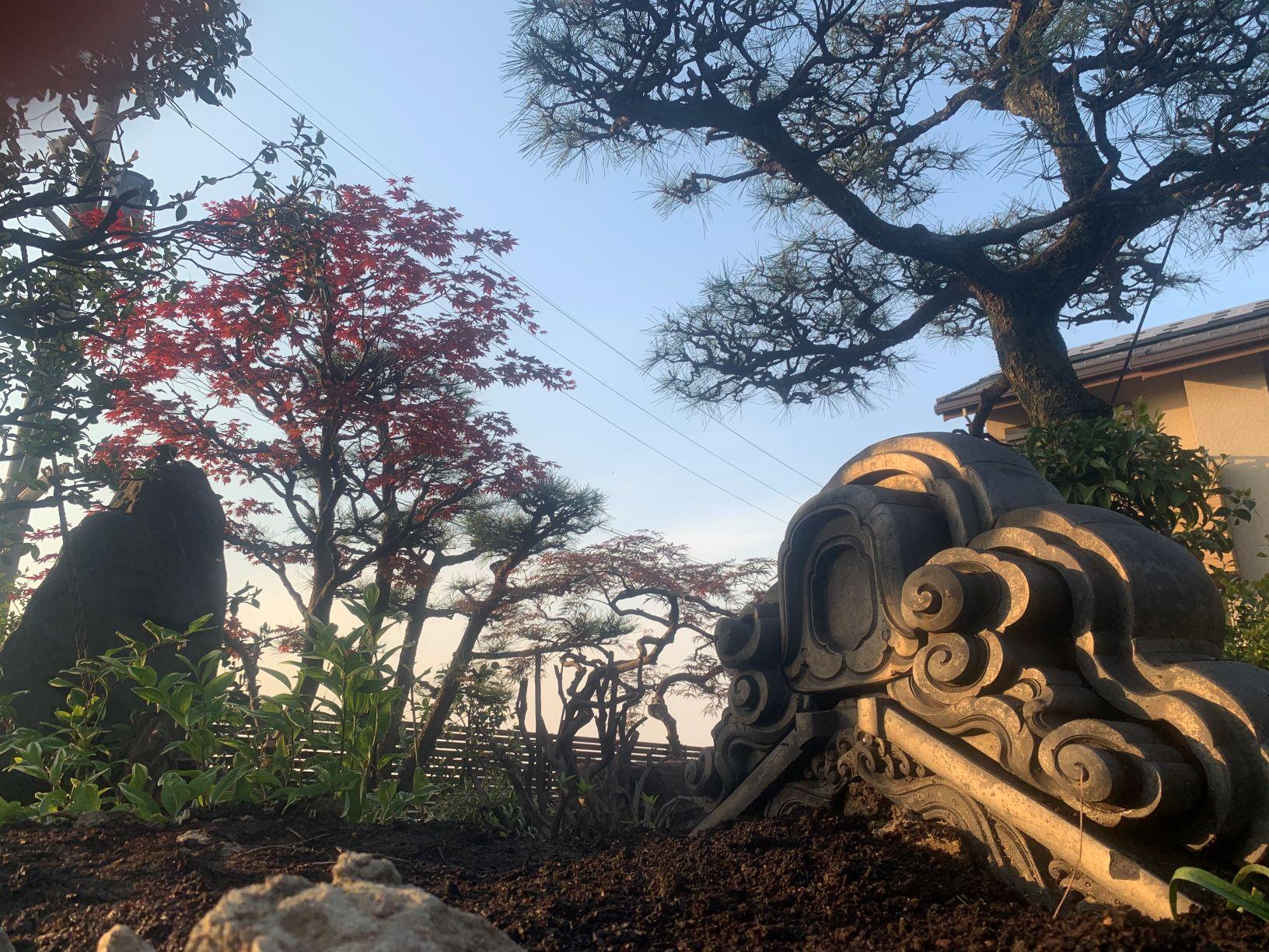 東海愛着のある和庭園を活かす庭。完成しました。のイメージ