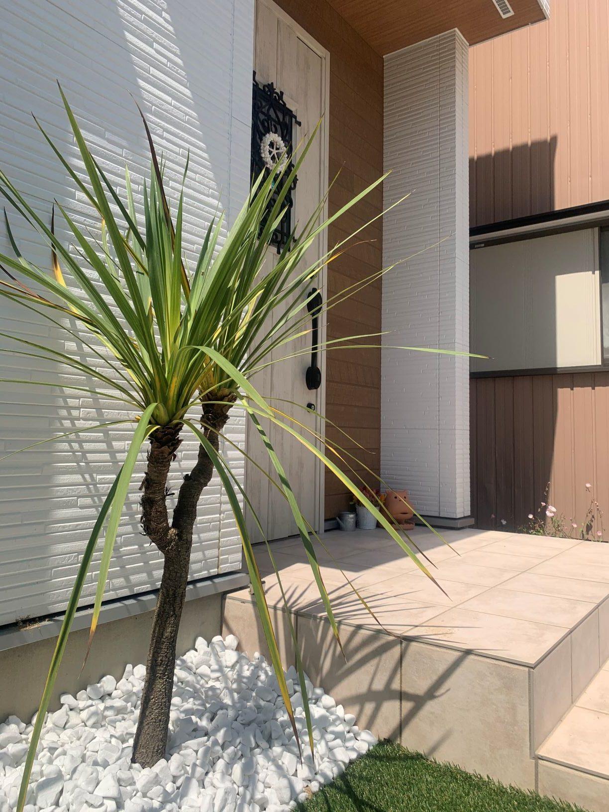 名東ドラセナの似合う庭。施工完了。のイメージ